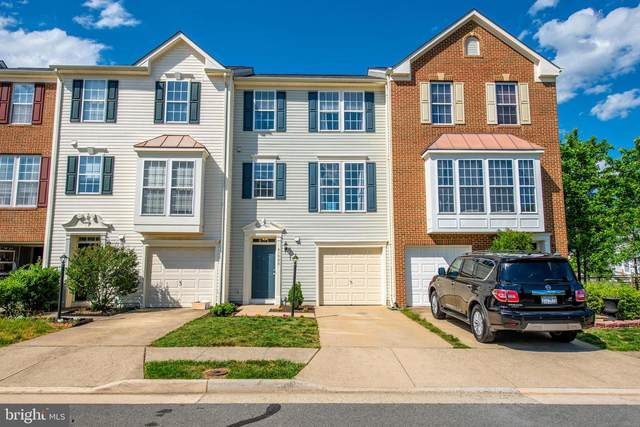 41900 Restful Terrace, ALDIE, VA 20105 (#VALO412252) :: Arlington Realty, Inc.