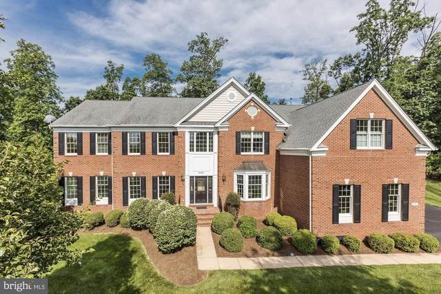 20049 Boxwood Place, ASHBURN, VA 20147 (#VALO412270) :: Advon Group