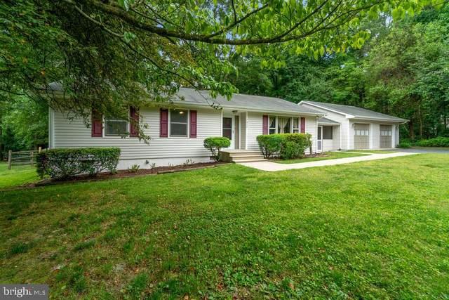 7452 Washington Drive, KING GEORGE, VA 22485 (#VAKG119692) :: Tessier Real Estate