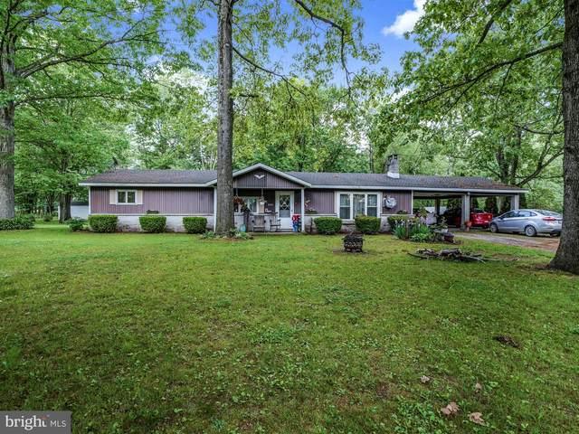 505 & 509 Pine Drive, SACRAMENTO, PA 17968 (#PASK130840) :: Pearson Smith Realty