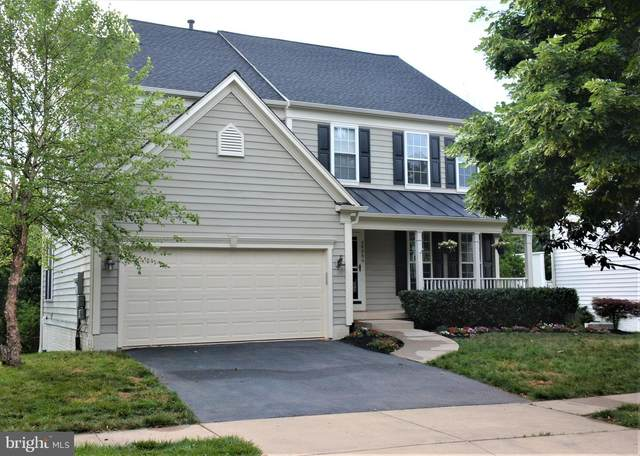 26064 Talamore Drive, CHANTILLY, VA 20152 (#VALO412316) :: Colgan Real Estate