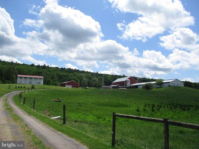 16041 Sportsman Club Road, CASSVILLE, PA 16623 (#PAHU101526) :: The Heather Neidlinger Team With Berkshire Hathaway HomeServices Homesale Realty
