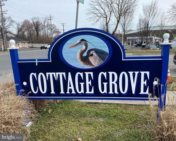 126 Cottage Grove Drive, PASADENA, MD 21122 (#MDAA435716) :: Bob Lucido Team of Keller Williams Integrity