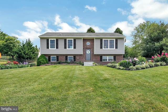 420 Shorbs Hill Road, HANOVER, PA 17331 (#PAYK138558) :: TeamPete Realty Services, Inc