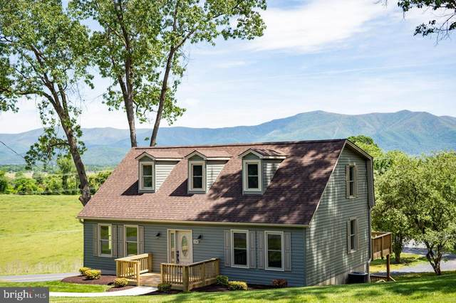 131 Forest Hills Drive, LURAY, VA 22835 (#VAPA105342) :: Debbie Dogrul Associates - Long and Foster Real Estate