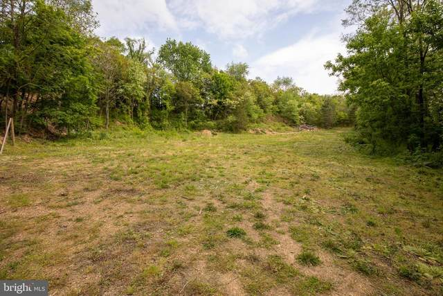Lemir Drive, MARTINSBURG, WV 25401 (#WVBE177498) :: Pearson Smith Realty