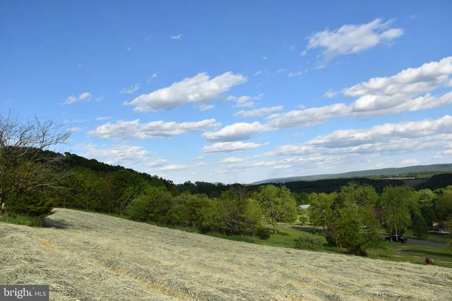 0 N Schuylkill Mountain Road, SCHUYLKILL HAVEN, PA 17972 (#PASK130870) :: The Jim Powers Team