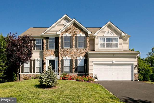203 Kemper Court, STEPHENSON, VA 22656 (#VAFV157800) :: Bob Lucido Team of Keller Williams Integrity