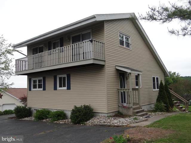 1579 Stag Drive, AUBURN, PA 17922 (#PASK130880) :: The Jim Powers Team