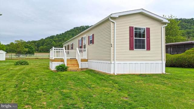 46 Kip Road, HALIFAX, PA 17032 (#PADA122044) :: Iron Valley Real Estate