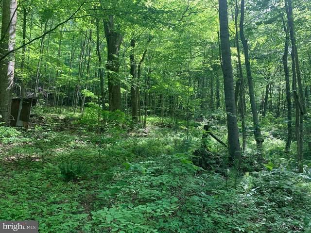 Gid Brown Hollow & Pointer Ridge Lane, WASHINGTON, VA 22747 (#VARP107336) :: EXP Realty