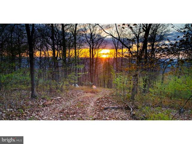 LOT 331 Nathaniel Mountain Road, MOOREFIELD, WV 26836 (#WVHD106016) :: AJ Team Realty