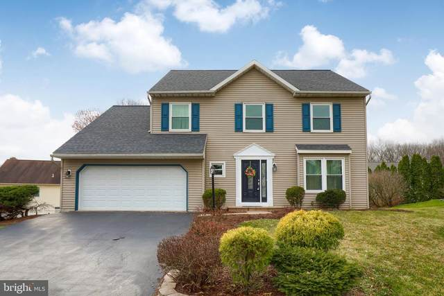 10 Egret Circle, DENVER, PA 17517 (#PALA163986) :: The Heather Neidlinger Team With Berkshire Hathaway HomeServices Homesale Realty