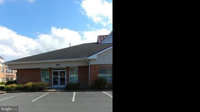 3042 Valley Avenue #101, WINCHESTER, VA 22601 (#VAWI114564) :: ExecuHome Realty