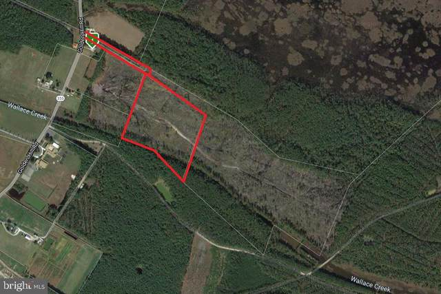 Sika Land, CHURCH CREEK, MD 21622 (#MDDO125526) :: RE/MAX Coast and Country