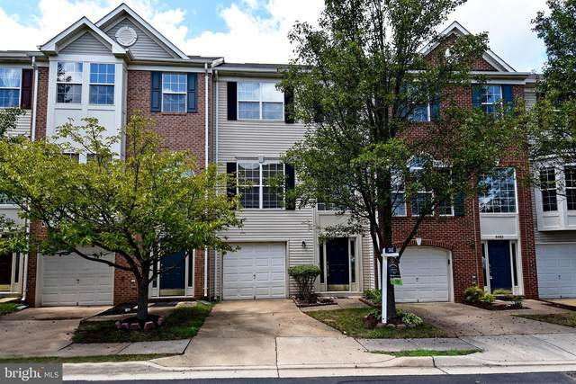 6684 Roderick Loop, GAINESVILLE, VA 20155 (#VAPW496316) :: Debbie Dogrul Associates - Long and Foster Real Estate