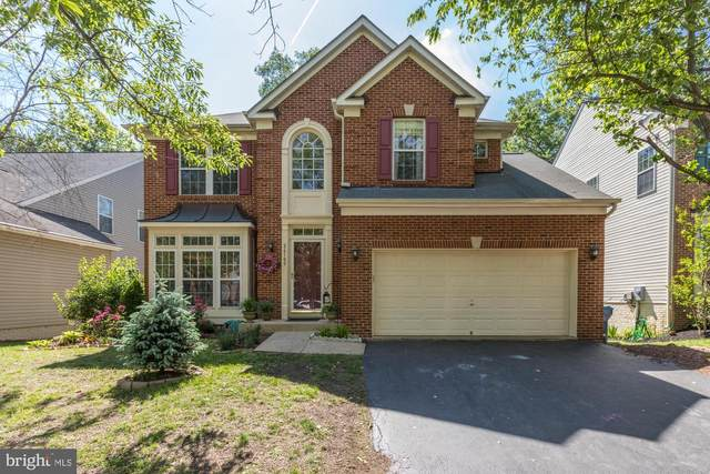 26109 Rachel Hill Drive, CHANTILLY, VA 20152 (#VALO412554) :: Colgan Real Estate