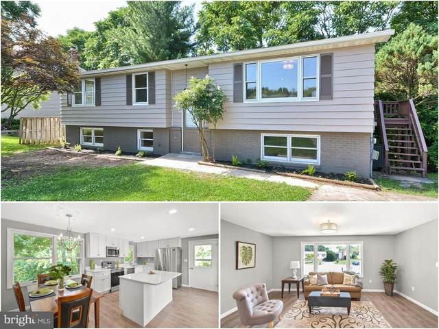 316 Violet Court, MOUNT AIRY, MD 21771 (#MDCR197086) :: Ultimate Selling Team