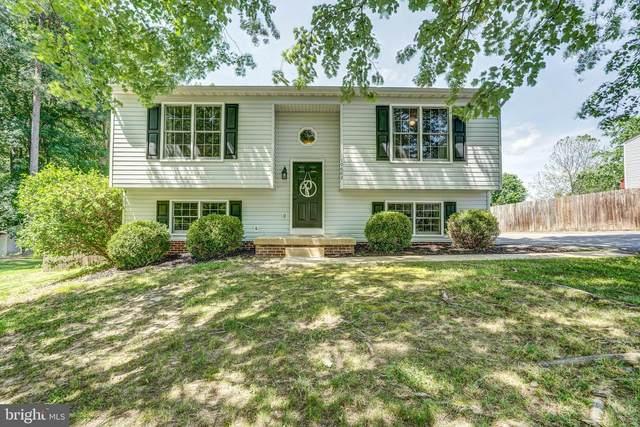 10602 Sumac Court, FREDERICKSBURG, VA 22407 (#VASP222430) :: Colgan Real Estate