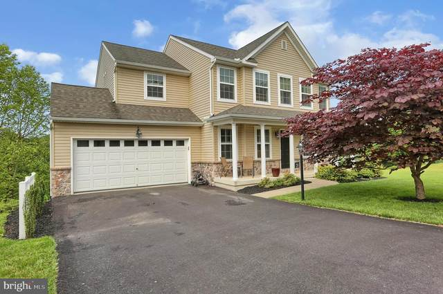 20 Larch Lane, ENOLA, PA 17025 (#PACB124162) :: The Heather Neidlinger Team With Berkshire Hathaway HomeServices Homesale Realty