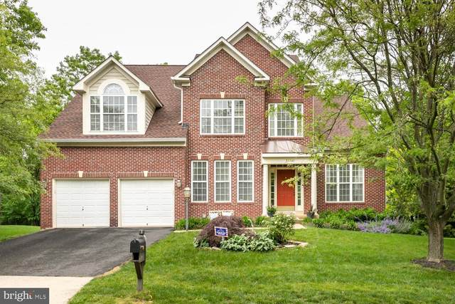 21335 Meadow Field Court, BROADLANDS, VA 20148 (#VALO412668) :: The Licata Group/Keller Williams Realty