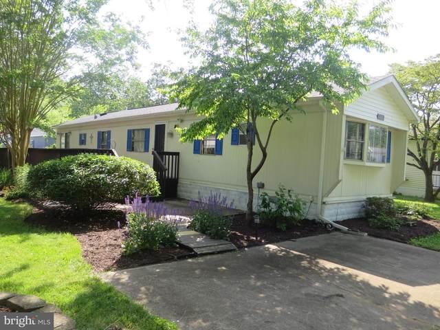 19724 Prince Street #13989, REHOBOTH BEACH, DE 19971 (#DESU162158) :: The Steve Crifasi Real Estate Group