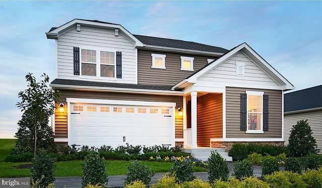124 Nathan Drive, STEPHENS CITY, VA 22655 (#VAFV157858) :: Pearson Smith Realty