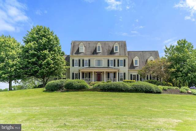 38057 Forest Mills Road, LEESBURG, VA 20175 (#VALO412700) :: Arlington Realty, Inc.