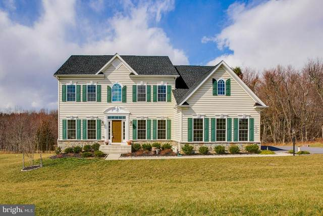 2955 Brubeck Terrace, IJAMSVILLE, MD 21754 (#MDFR265270) :: The Sky Group