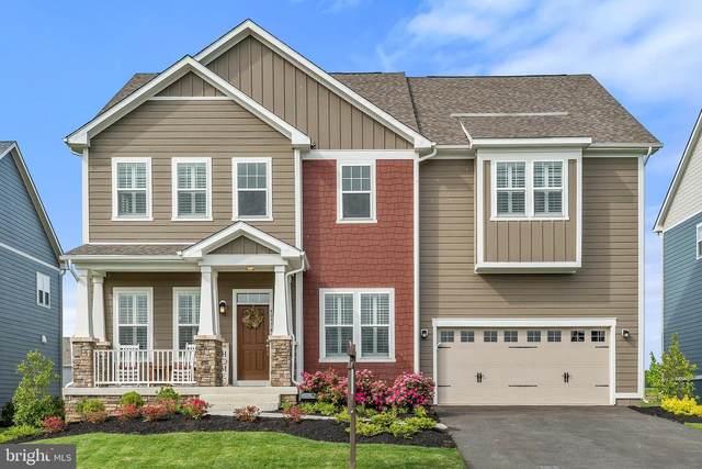40974 White Clover Lane, ALDIE, VA 20105 (#VALO412774) :: Century 21 Dale Realty Co