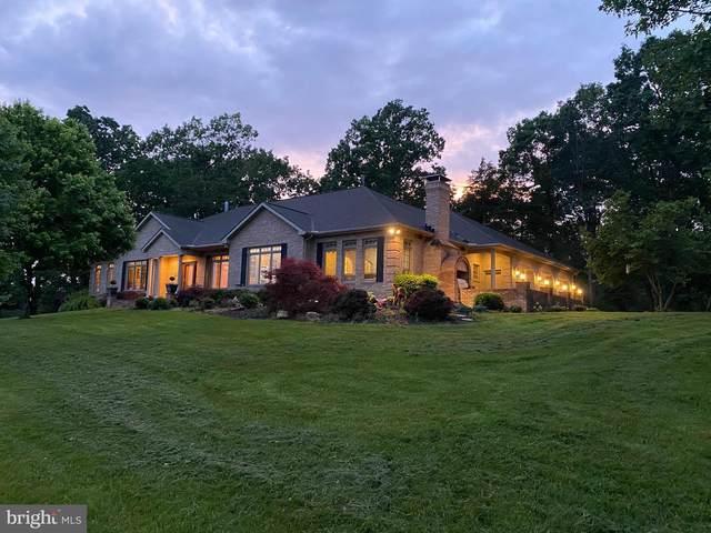 3773 E Point Road, ELKTON, VA 22827 (#VARO101224) :: Colgan Real Estate