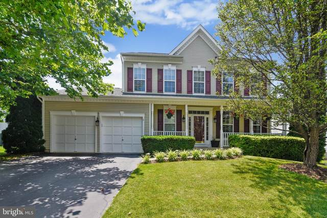 17137 Magic Mountain Drive, ROUND HILL, VA 20141 (#VALO412872) :: Pearson Smith Realty