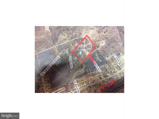 0 W Wesner Road, BLANDON, PA 19510 (#PABK358774) :: The Matt Lenza Real Estate Team