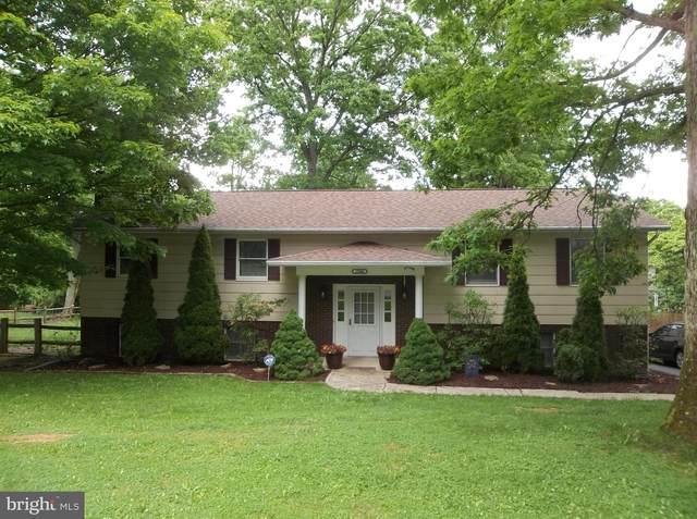 15006 Laurel Ridge Road SW, CRESAPTOWN, MD 21502 (#MDAL134428) :: Bic DeCaro & Associates