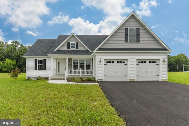 17795 Pimlico Road, MILTON, DE 19958 (#DESU162456) :: The Allison Stine Team