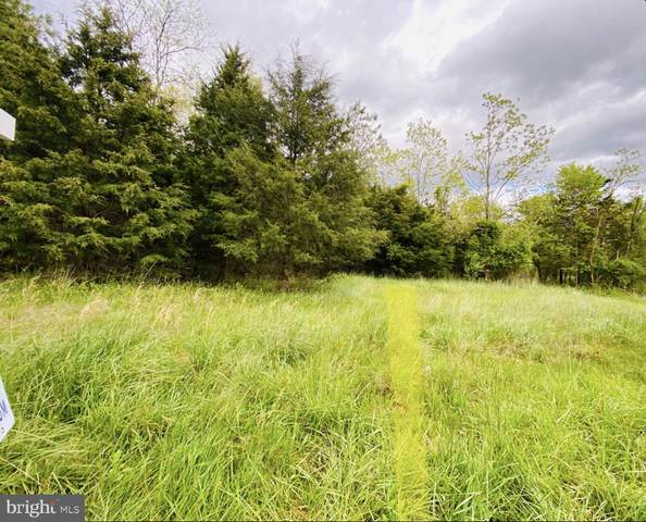 822 Andrews, STRASBURG, VA 22657 (#VAWR140508) :: Debbie Dogrul Associates - Long and Foster Real Estate
