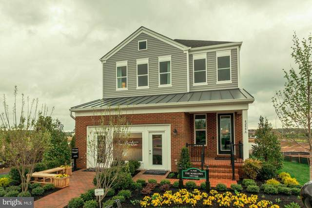 1 Beaver Crossing Square, ASHBURN, VA 20148 (#VALO413194) :: Network Realty Group