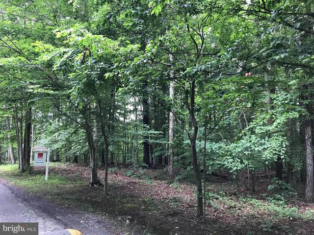 12901 Clifton Creek Drive Lot 2B, CLIFTON, VA 20124 (#VAFX1134056) :: AJ Team Realty