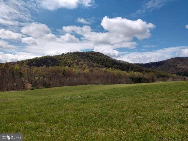 2217 Garr Mountain Road, MADISON, VA 22727 (#VAMA108396) :: AJ Team Realty