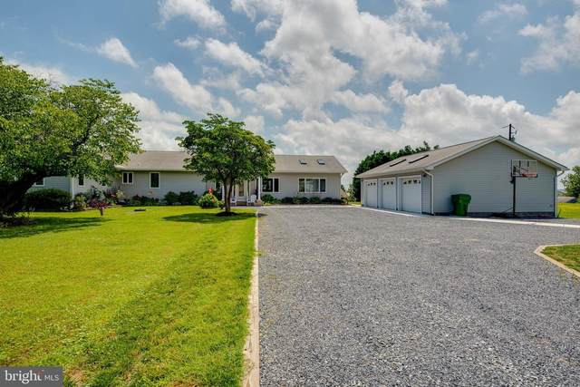 211 Delaware Avenue, STEVENSVILLE, MD 21666 (#MDQA144244) :: The MD Home Team