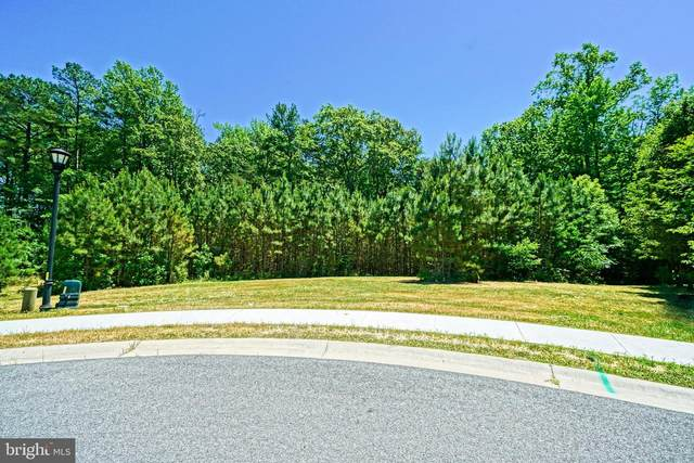 21400 N Acorn Way, LEWES, DE 19958 (#DESU162548) :: Jim Bass Group of Real Estate Teams, LLC