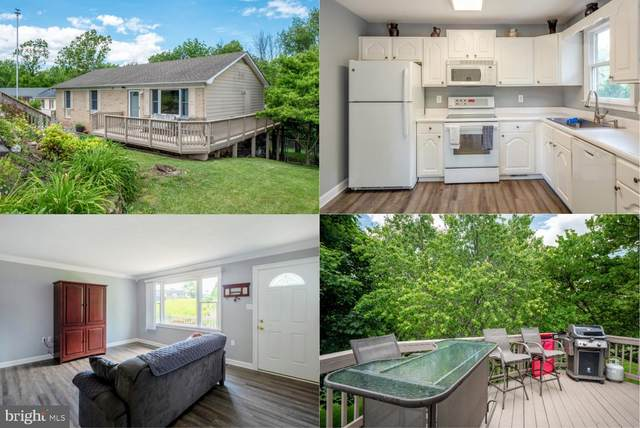 218 Lakeridge Drive, STEPHENS CITY, VA 22655 (#VAFV158004) :: Shamrock Realty Group, Inc