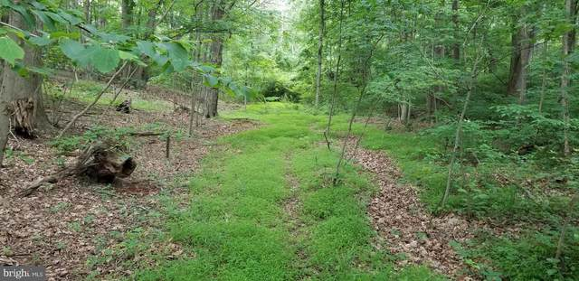 Oak Ridge Lane Lot #31, HEDGESVILLE, WV 25427 (#WVMO116982) :: EXIT Realty Enterprises