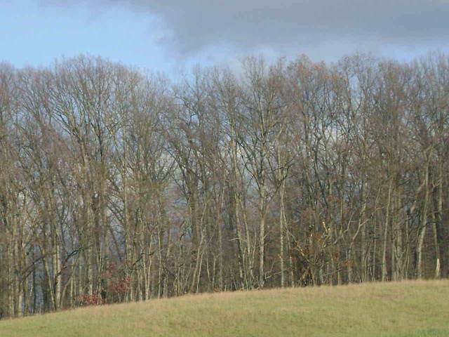 Lot 130 Oakwood Drive, RED LION, PA 17356 (#PAYK139416) :: ExecuHome Realty