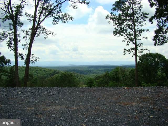 Supinlick Ridge, MOUNT JACKSON, VA 22842 (#VASH119444) :: Bob Lucido Team of Keller Williams Integrity