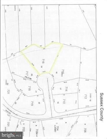 Lot 19 Cedar Ct., DAGSBORO, DE 19939 (#DESU162754) :: Better Homes Realty Signature Properties