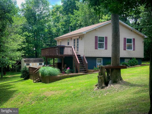 101 Pinto Trail, WINCHESTER, VA 22602 (#VAFV158036) :: Colgan Real Estate