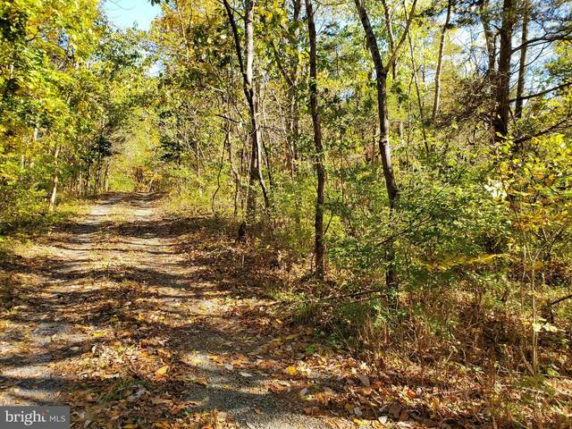 Red Hawk/Woods Way, MIDDLETOWN, VA 22645 (#VAWR140540) :: Pearson Smith Realty