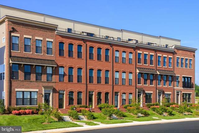 22983 Cabrillo Terrace Lot 5881, BRAMBLETON, VA 20148 (#VALO413578) :: RE/MAX Advantage Realty