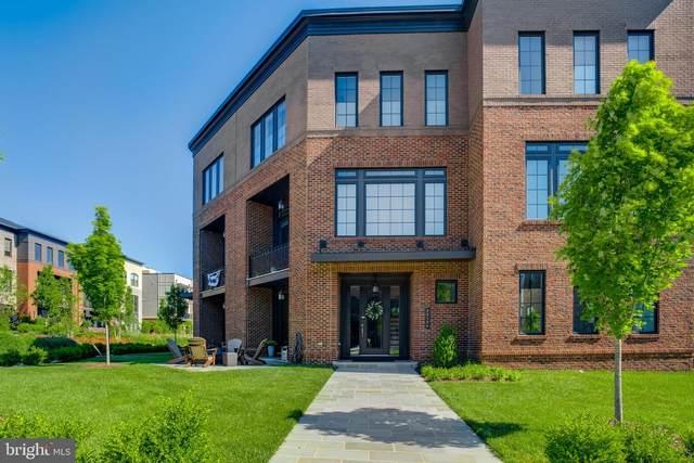 23109 Cottonwillow Square, BRAMBLETON, VA 20148 (#VALO413592) :: Jennifer Mack Properties